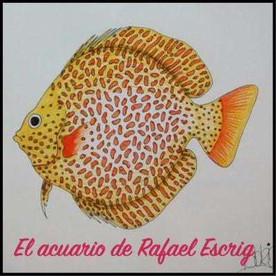 Acuario de Rafael Escrig